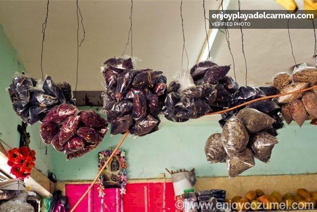 Cozumel_Comida _Playa Food Tour_5849